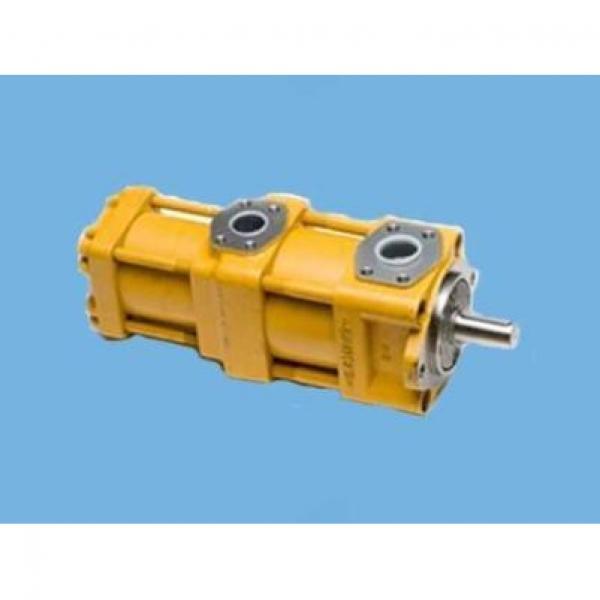 CQT63-80FV-S1376-A Hot Sale Pump #3 image