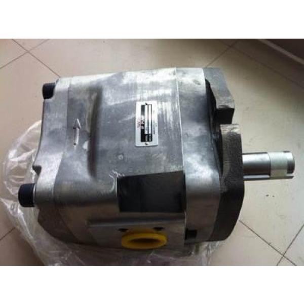 J-VZ100A4RX-10 Hydraulisk pump #3 image
