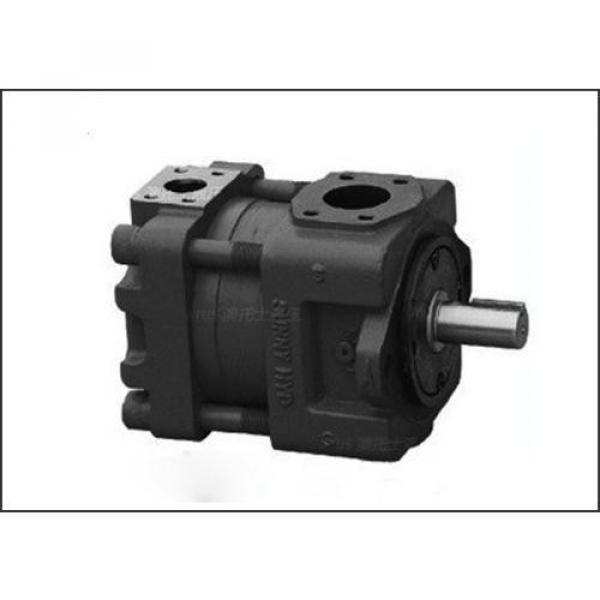 PVD-2B-40P-16G5-4702F Hydraulisk pump #3 image