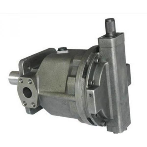 QT63-80-A Hydraulisk pump #1 image